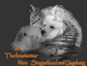 Tierbestattung-Siegerland